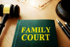 Family Court book