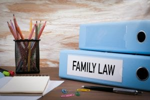 Family law binders
